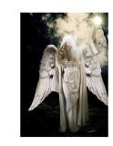 Giáo trình hướng dẫn cách tạo ảnh thiên thần bằng phương pháp sử dụng bộ lọc content aware p4
