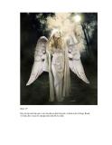 Giáo trình hướng dẫn cách tạo ảnh thiên thần bằng phương pháp sử dụng bộ lọc content aware p5