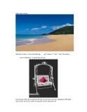 Kỹ thuật sắp xếp ảnh minh họa bằng phương pháp lens correction theo thứ tự dòng và cột p7