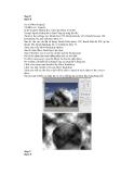 Kỹ thuật sử dụng bộ lọc distort trong tạo ảnh bằng fantasic phối kỹ thuật blend màu p8