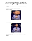 Quá trình hình thành giáo trình hướng dẫn tạo ảnh biếm hoạ bằng thủ thuật merge background trong kỹ thuật ghép ảnh p1