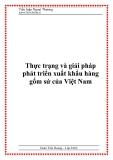 Thực trạng và giải pháp phát triển xuất khẩu hàng gốm sứ của Việt Nam