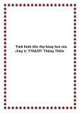 Tình hình tiêu thụ hàng hoá của công ty TM&DV Thăng Thiên