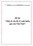 """Đề tài """"Một số vấn đề về xuất khẩu gạo của Việt Nam"""""""