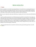 Một số đặc điểm về cá chép koi