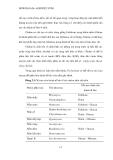 Luận văn : Chọn lọc và nhân sinh khối nấm Trichodema đối kháng với nấm gây hại cây trồng part 2