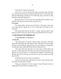 Luận văn: Nghiên cứu đặc điểm sinh học của côn trùng thuộc Bộ Cánh cứng hại lá keo và những phương pháp phòng trừ chúng tại huyện Phú Lương tỉnh Thái Nguyên (part 9)