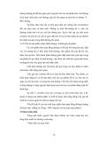 Luận văn : Chế biến sản phẩm vỏ bưởi tẩm đường part 3