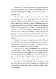 Đề tài : KHẢO SÁT CÁC YẾU TỐ ẢNH HƯỞNG ĐẾN CHẤT LƯỢNG CỦ CẢI TRẮNG MUỐI CHUA part 4