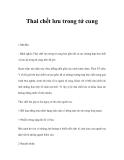 Nguyên nhân Thai chết lưu trong tử cung