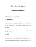 Giun sán - Sán lá ruột ( Fasciolopsis buski )