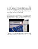 Quá trình hướng dẫn ghép ảnh bằng phương pháp dupliacate layer và liquify p7