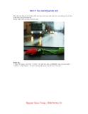 Bài 17: Tạo mưa động trên ảnh