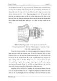 Truyền Động - Thiết Bị Truyền Động, Trang Bị Động Lực Phần 5