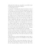 Triết học về nho giáo và ảnh hưởng ở Việt Nam - 2