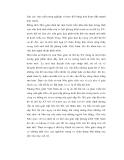 Triết học về nho giáo và ảnh hưởng ở Việt Nam - 4