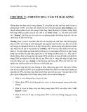 Giáo trình -công nghệ di truyền - chương 5