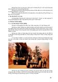 Giáo trình -Khai thác và vận chuyển lâm sản -p4