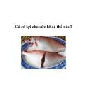 Cá có lợi cho sức khoẻ thế nào?