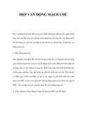 HẸP VAN ĐỘNG MẠCH CHỦ