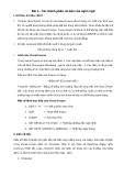 Bài 3 - Các thành phần cơ bản của ngôn ngữ