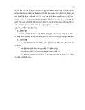 Luận văn : XÁC ĐỊNH GIỚI TÍNH BẰNG KỸ THUẬT MULTIPLEX PCR TRÊN BA GIỐNG BÒ part 2