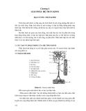 GIẢI PHẪU HỌC TẬP 2 - Chương 4