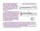 Bài giảng nguyên lý cắt gọt gỗ : Nguyên lý và công cụ khoan gỗ part 3
