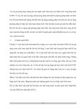 Bản chất thuế VAT và VAT ở Việt Nam - 7