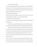 Lý luận và phân tích nghiệp vụ thị trường mở - 2