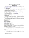 Bài tập - Định nghĩa và phân loại tính từ