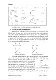 Giáo trình Enzyme part 5