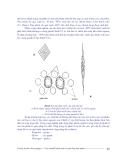 Giáo trình kỹ thuật lạnh và lạnh đông thực phẩm part 8