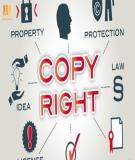 Tổng hợp các văn bản pháp luật về Bảo vệ quyền sở hữu trí tuệ