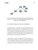 Giáo trình hình thành giao thức định tuyến theo trạng thái đường liên kết trong cấu hình OSPF p2