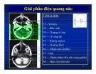 Bài giảng : Giải phẫu thần kinh đối chiếu chẩn đoán Hình ảnh part 5
