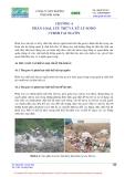 Giáo trình quản lý chất thải sinh hoạt rắn part 4