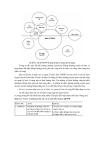 Giáo trình : PHƯƠNG PHÁP TIẾP CẬN CÓ SỰ THAM GIA TRONG PHÁT TRIỂN LÂM NGHIỆP XÃ HỘI part 8