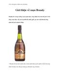Giáo trình quản trị khách sạn, nhà hàng - Giới thiệu về rượu Brandy