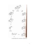 Giáo trinh : Phân tích cấu trúc hợp chất hữu cơ part 5