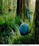 Mô hình hóa môi trường - (Lê Hoàng Nghiêm ) Chương 5