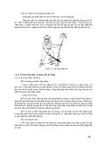 Giáo trình : KHAI THÁC VÀ VẬN CHUYỂN LÂM SẢN phần 3