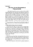 Chương 2  Cấu trúc của các Nucleotide và Polynucleotide