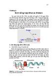 Chương 6 Sinh tổng hợp RNA và Protein