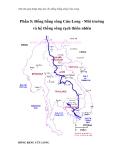 Thử tìm giải pháp thủy lợi cho đồng bằng sông Cửu Long - Phần 5: Đồng bằng sông Cửu Long - Môi trường và hệ thống sông rạch thiên nhiên