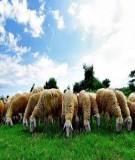 Giáo trình - Di truyền số lượng và chọn giống vật nuôi-chương 2