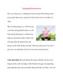 7 giải pháp để luôn tươi trẻ