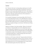 Tiểu luận về chiến tranh - Phần 1
