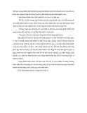 Tổ Chức vận chuyển hành khách và du lịch đường sắt Phần 2