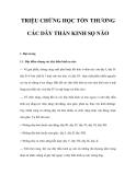 TRIỆU CHỨNG HỌC TỔN THƯƠNG CÁC DÂY THẦN KINH SỌ NÃO